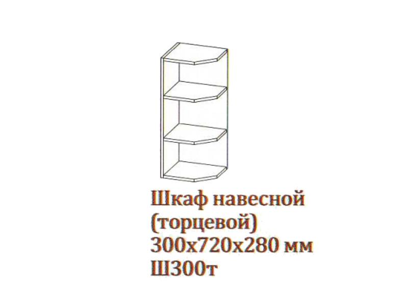 Шкаф_навесной_300-720_торцевой_Ш300т-720_300х720х280_Серый